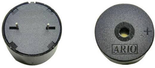 Piëzo-signaal Geluidsontwikkeling: 102 dB Spanning: 9 V Continu 716870 1 stuks