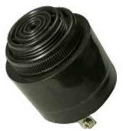 Piëzo-zoemer Geluidsontwikkeling: 91 dB 60 - 250V/DC/AC Inhoud: 1 stuks
