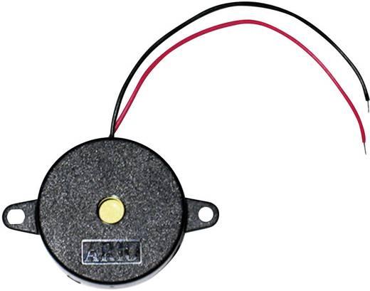 Piëzo-signaal Geluidsontwikkeling: 90 dB Spanning: 9 V Continu 717609 1 stuks