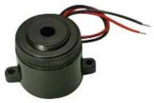 Piëzo-zoemer Geluidsontwikkeling: 100 dB 4 - 28 V/DC Inhoud: 1 stuks