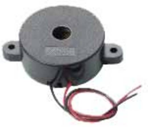 Piëzo-signaal Geluidsontwikkeling: 103 dB Spanning: 9 V Interval 717736 1 stuks
