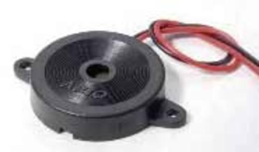 Piëzokeramische geluidsomzetter Geluidsontwikkeling: 94 dB 40 V/DC 6 kHz Inhoud: 1 stuks