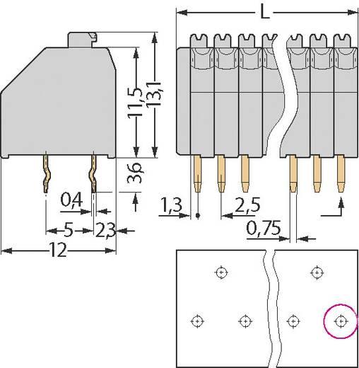 Veerkachtklemblok 0.50 mm² Aantal polen 10 250-410 WAGO Grijs 1 stuks