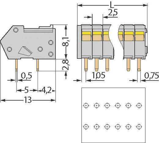 Veerkachtklemblok 0.50 mm² Aantal polen 5 WAGO Grijs 1 stuks