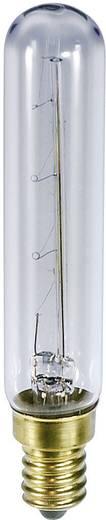 Buislamp 235 V 25 W 100 mA Fitting: E14 Helder Barthelme Inhoud: 1 stuks