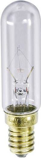 Buislamp 220 - 260 V 25 W 96 - 113 mA Fitting: E14 Helder Barthelme Inhoud: 1 stuks
