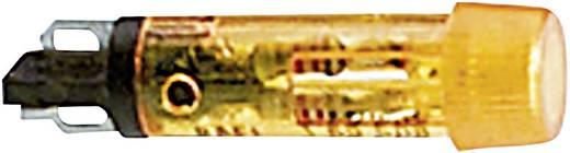 Signaallampen met LED 24 - 28 V 8 - 12 mA Geel (transparant) RAFI Inhoud: 1 stuks
