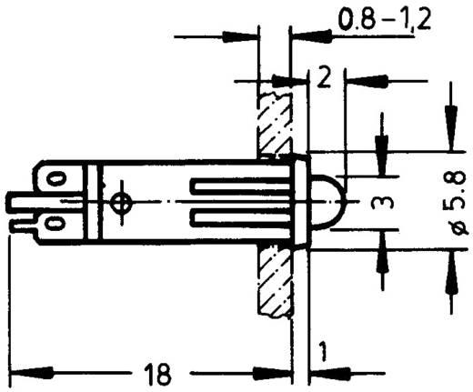 Signaallampjes met LED 24 - 28 V 8 - 12 mA Groen (transparant) RAFI Inhoud: 1 stuks