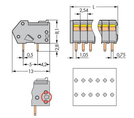 Veerkachtklemblok 0.50 mm² Aantal polen 16 1-L KLEMMENL.16.P.GREY M.SCHIEB.2,54 WAGO Grijs 100 stuks