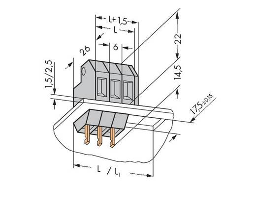 Veerkachtklemblok 4.00 mm² Aantal polen 1 226-101 WAGO Grijs 200 stuks