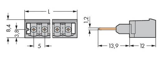 Male header (standaard) Totaal aantal polen 2 WAGO 231-162/