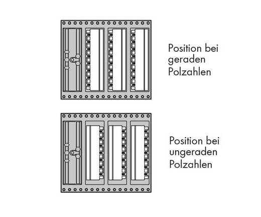 Male header (standaard) Totaal aantal polen 7 WAGO 231-467/