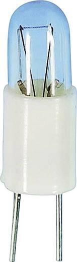 Subminiatuurlampen BIPIN T1 5 V 0,6 W Gloeilamp Fitting=Bi-Pin T1 Helder Barthelme Inhoud: 1 stuks