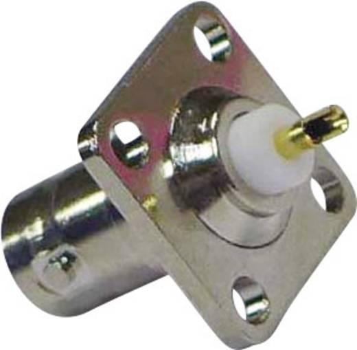 BNC-connector Flensbus, contacten recht 75 Ω 1 stuks
