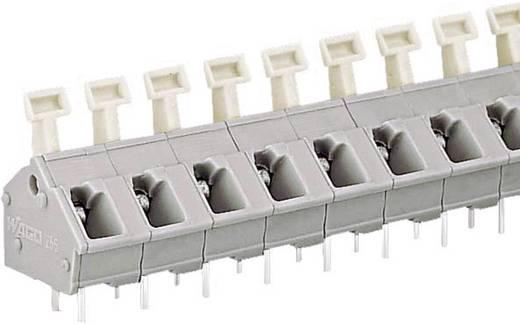 Veerkachtklemblok 2.50 mm² Aantal polen 2 256-502 WAGO Grijs 1 stuks