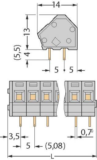 Veerkachtklemblok 2.50 mm² Aantal polen 2 WAGO Grijs 1 stuks