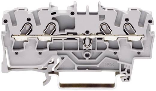 Doorgangsklem 3.50 mm Veerklem Toewijzing: L Grijs WAGO 2000-1401 1 stuks
