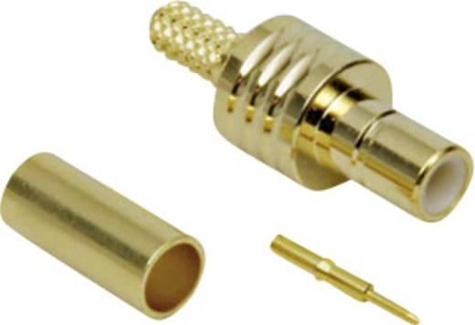 BKL Electronic 411003 SMB-connector Stekker, recht 50 Ω 1 stuks