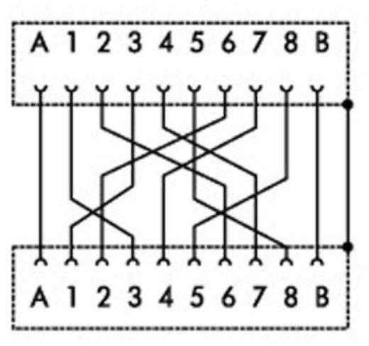 WAGO Overdrachtmodule Y-conjack-22 Inhoud: 1 stuks
