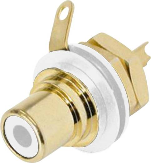 Rean AV NYS367-9 Cinch-connector Flensbus, contacten recht Aantal polen: 2 Wit 1 stuks