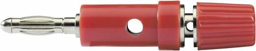 SCI Pluimstekker Adapter, recht Stift-Ø: 4 mm Rood 1 stuks