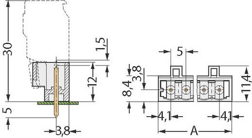 Penbehuizing-board 721 Totaal aantal polen 2 WAGO 721-132/001-000 Rastermaat: 5 mm 1 stuks