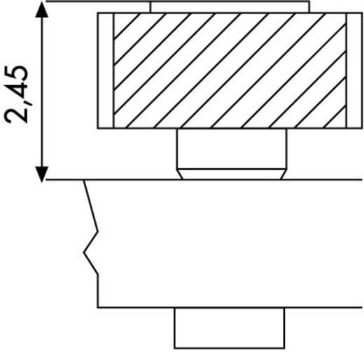 Female connector (precisie) Aantal rijen: 1 Aantal polen per rij: 20 BKL Electronic 10120830 1 stuks