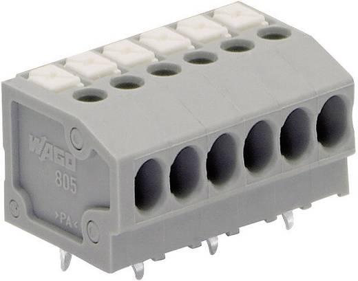 Veerkachtklemblok 1.50 mm² Aantal polen 5 805-105 WAGO Grijs 1 stuks