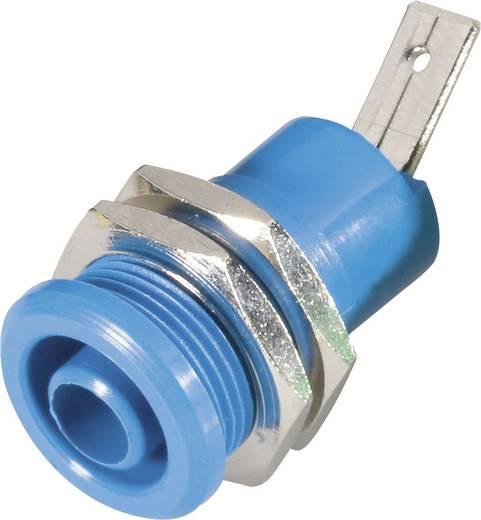 Schnepp BU 4600 bl Veiligheids-labconnector, female Bus, inbouw verticaal Stift-Ø: 4 mm Blauw 1 stuks