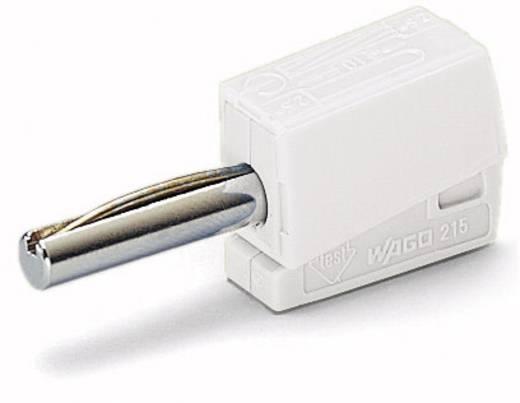 WAGO 215-611 Banaanstekker Stekker, recht Stift-Ø: 4 mm Wit 1 stuks