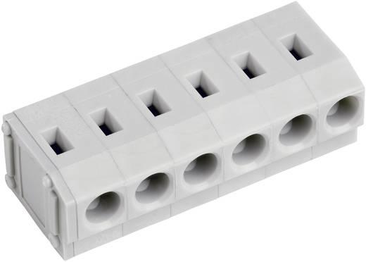 Veerkachtklemblok 2.50 mm² Aantal polen 6 AK4100/6-5.0 PTR Kiezel-grijs 1 stuks