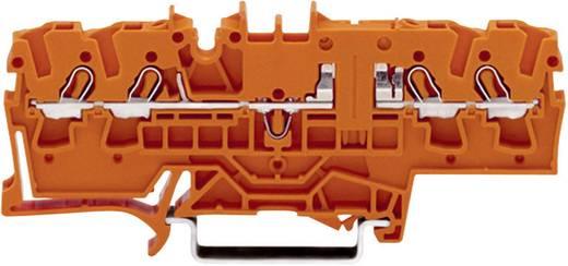 Doorgangsklem 5.20 mm Veerklem Oranje WAGO 2002-1802 1 stuks