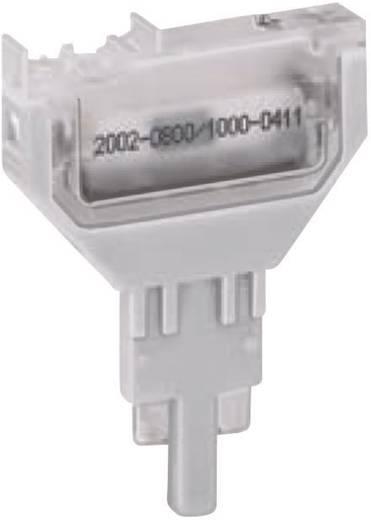 WAGO 2002-800 2002-800 Blanco stekker, onbedrukt 1 stuks