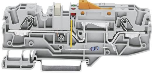 Scheidingsklem 15 mm Veerklem Toewijzing: L Grijs WAGO 2006-1671/1000-848 1 stuks
