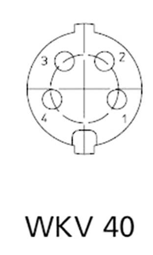 Lumberg WKV 40 DIN-connector Bus, haaks Aantal polen: 4 Zilver 1 stuks