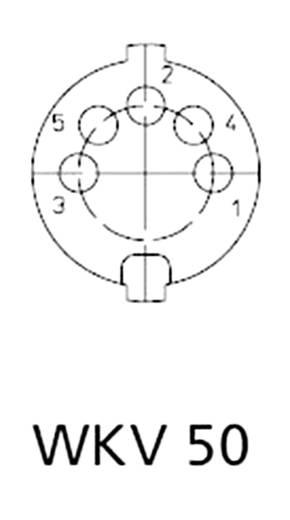 Lumberg WKV 50 DIN-connector Bus, haaks Aantal polen: 5 Zilver 1 stuks