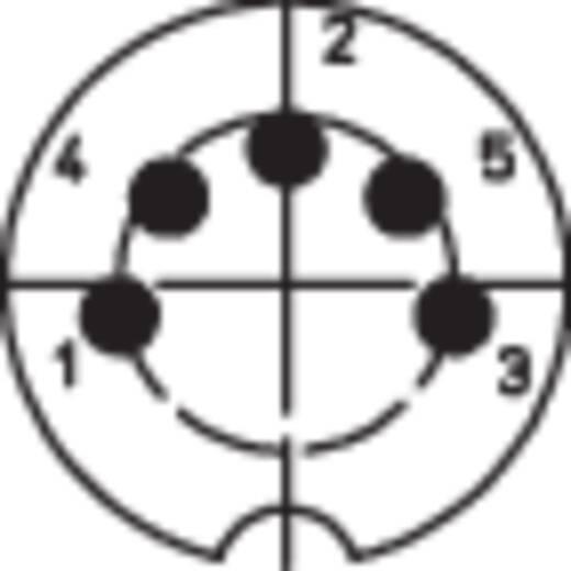 BKL Electronic 0208004 DIN-connector Stekker, recht Aantal polen: 5 Zilver 1 stuks