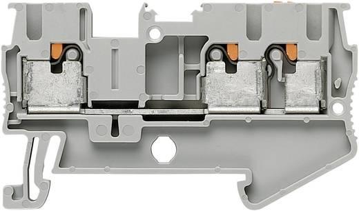 Phoenix Contact PT 2,5-TWIN Push-in drie-aderige klemmen PIT-TWIN Grijs Inhoud: 1 stuks