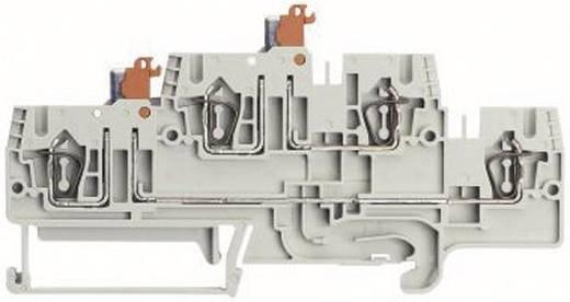 Etagescheidingsklem Fasis WKFN 2,5 TKM E1/35 Grau Wieland Grijs Inhoud: 1 stuks