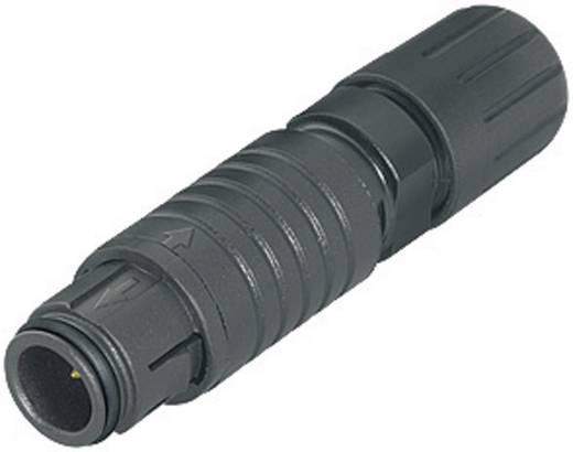 Ronde subminiatuurstekker serie 420 Kabelsteker Binder 99-4705-00-03 IP67 Aantal polen: 3