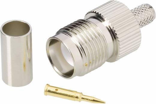 BKL Electronic 0419413 TNC-Reverse-connector Stekker, recht 50 Ω 1 stuks