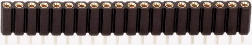 Female connector (precisie) Aantal rijen: 1 Aantal polen per rij: 20 BKL Electronic 10120838 1 stuks