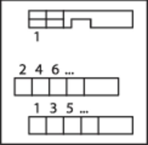 WAGO 289-507 Overdrachtsmodule met stiftstrook 0.08 - 2.5 mm² Aantal polen: 40 Inhoud: 1 stuks