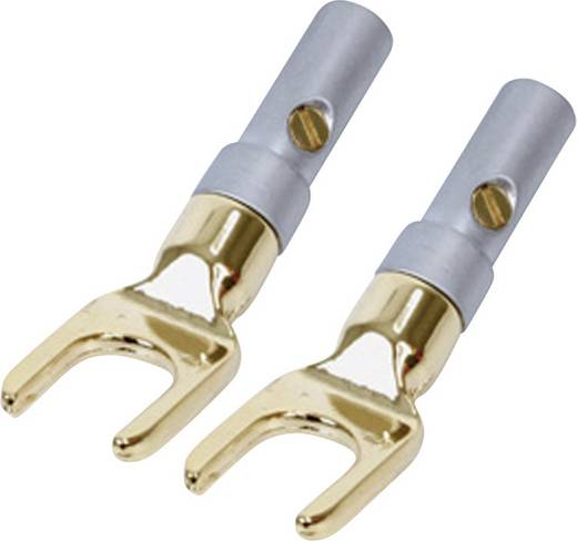 Luidsprekerconnector Stekker, haaks Kash Aantal polen: 1