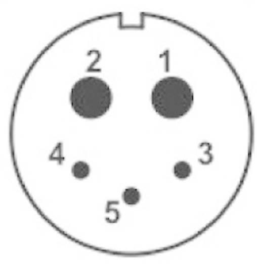 IP68-connector serie SP2113 / P 5B Flensstekker voor frontmontage Weipu SP2113 / P 5B IP68 Aantal polen: 5B