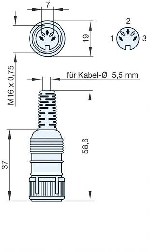 DIN-connector Bus, recht Hirschmann MAK 3100S Aantal polen: 3