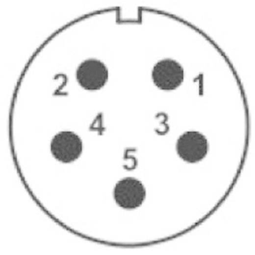 IP68-connector serie SP2113 / P 5C Aantal polen: 5C Flensstekker voor frontmontage 15 A SP2113 / P 5C Weipu 1 stuks