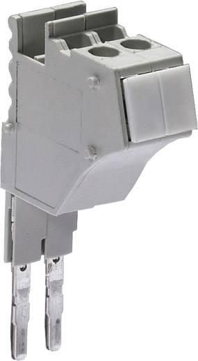 Testadapter Modular fasis PS WKC/F Wieland Inhoud: 1 stuks