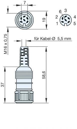 Hirschmann MAK 6100 DIN-connector Bus, recht Aantal polen: 6 Grijs 1 stuks
