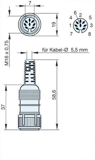 Hirschmann MAK 8100S DIN-connector Bus, recht Aantal polen: 8 Grijs 1 stuks